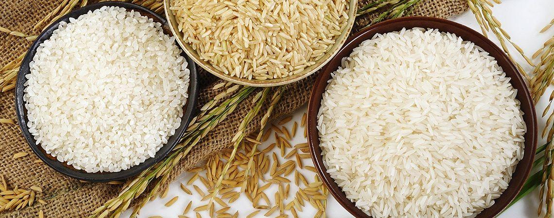 MG Rice India